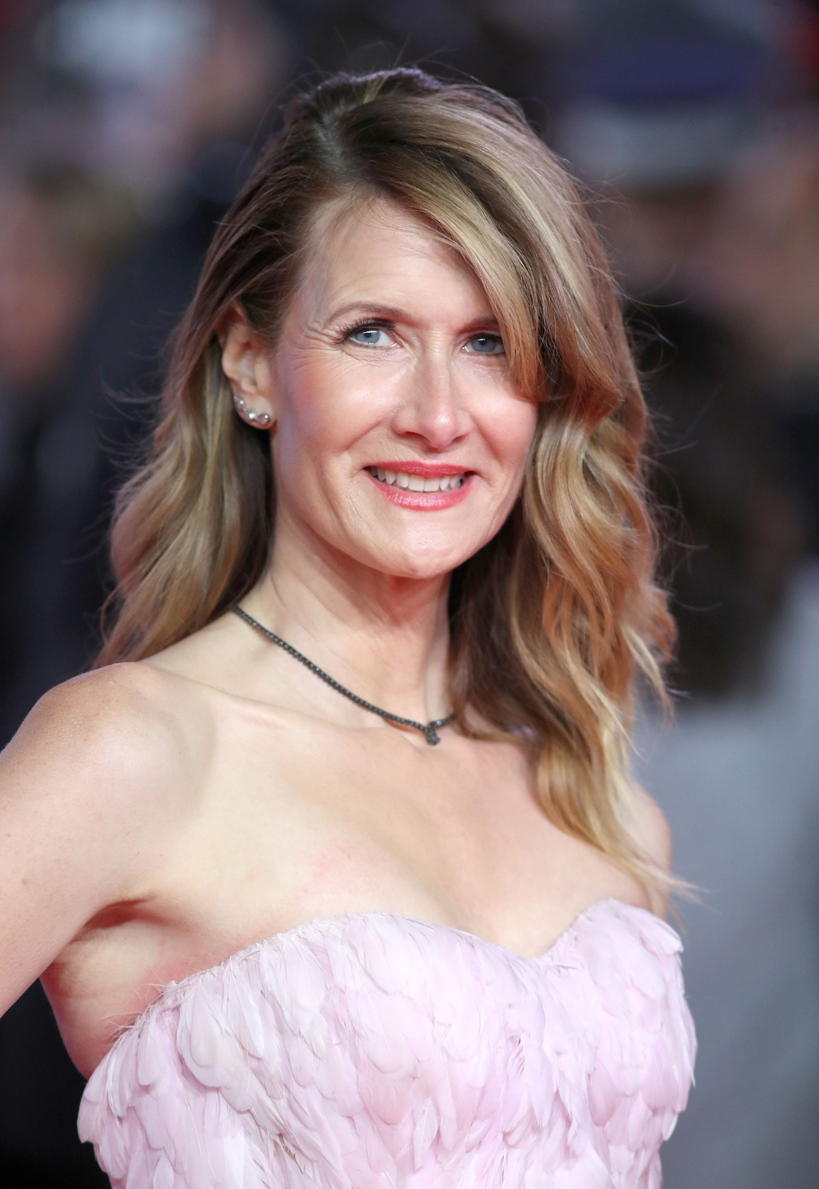 Steps Into The Red Carpet With Emma Day Laura Dern Makeup